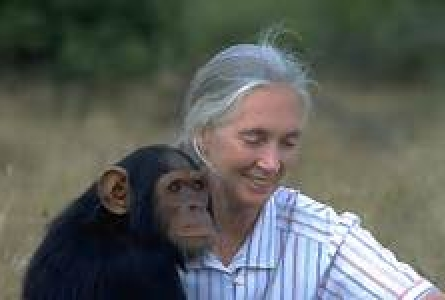 Jane Goodall - save the date